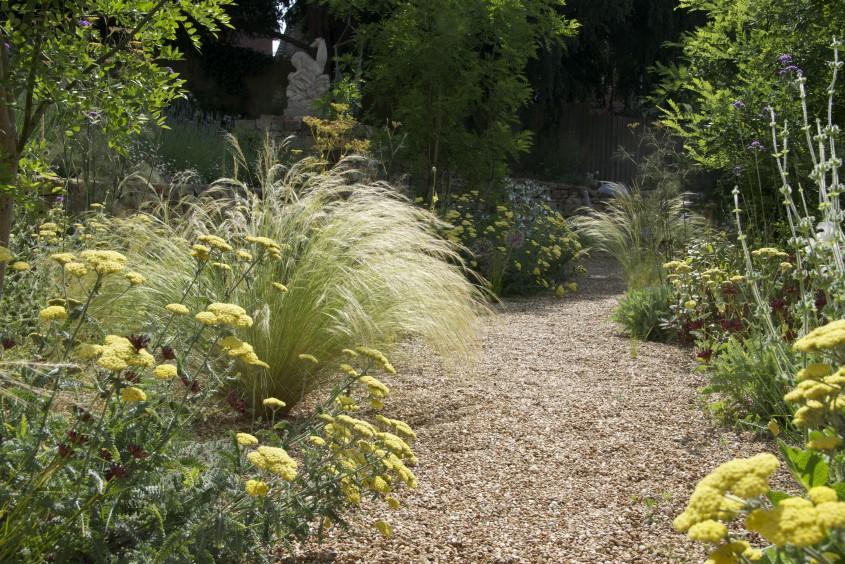 Cleve West, Landscape Design, Garden Designer, Award Winning, dry stone walling, levels, Yorkstone, Dianthus cruentus