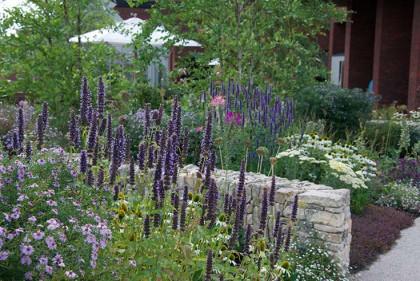 Horatio's Garden, Cleve West Landscape Design, award winning, SSIT, contemporary garden, garden designers surrey, garden designers london, RHS Gold Medalist