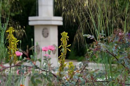 M&G Garden Videos