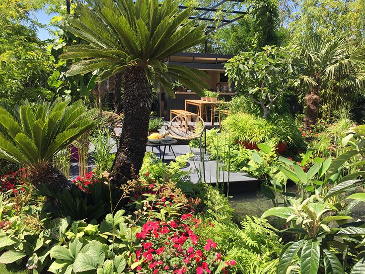 Cleve West Landscape Design, Garden Design, Garden Designer, Surrey Garden Designer, Award winning garden designer, RHS Gold Medal, RHS, SOW